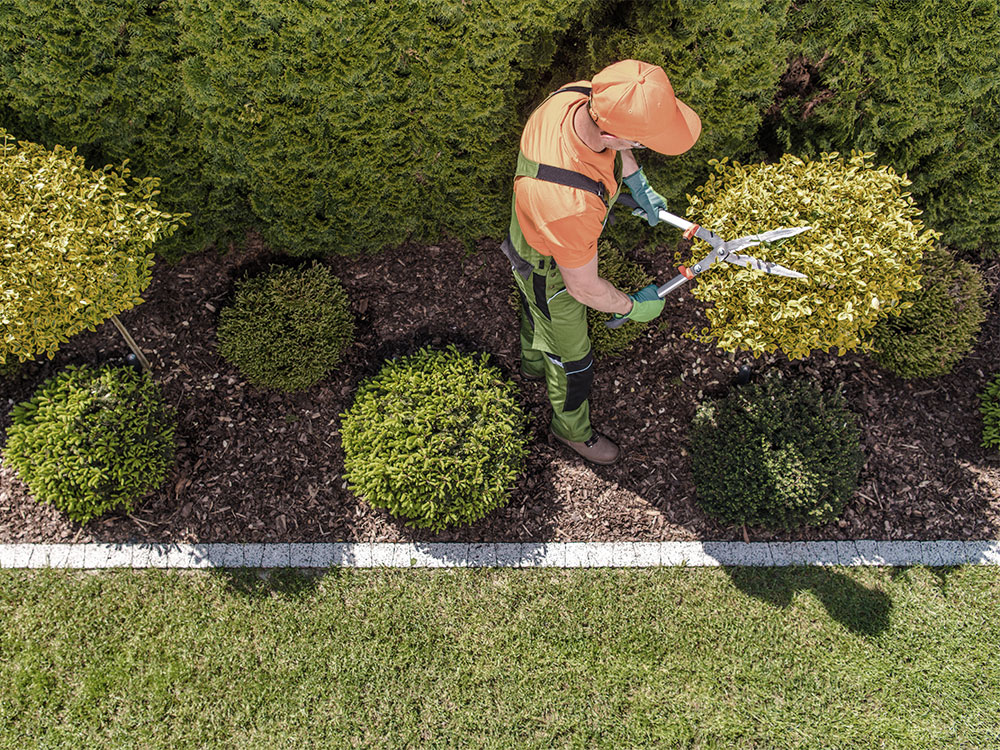 Commercial Garden Bed Maintenance Calgary
